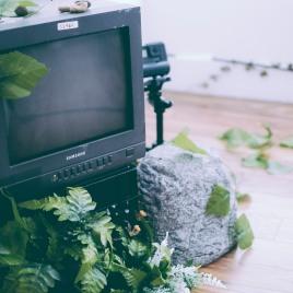 parsonsjeffTV-14
